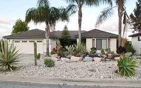 xeriscape lawn